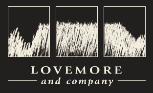 Lovemore footer logo